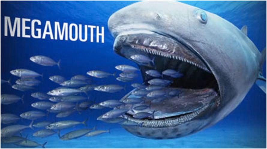 Hai-Forschungspapier